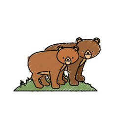cute bear animal couple together vector image