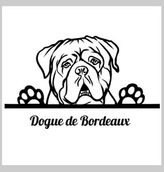 Dogue de bordeaux dog breed - peeking dogs - breed vector