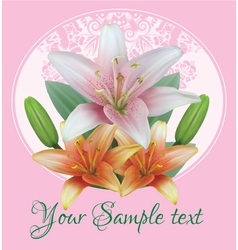 Greeting card with bouquet flowers of lilies vector