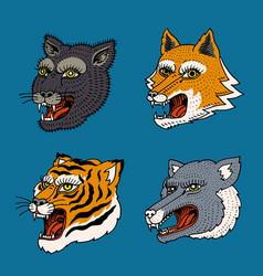 head of wild animal predator puma wolf fox tiger vector image