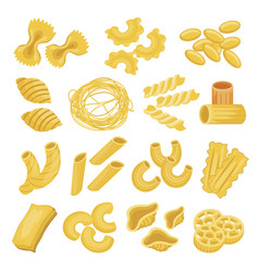 pasta types set italian noodles and macaroni vector image