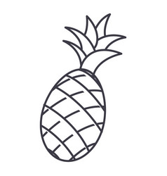 pineapple line icon sign on vector image