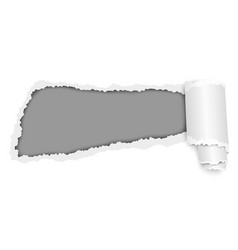 torn hole in sheet of bright white paper vector image