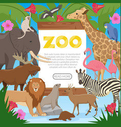 zoo cartoon poster vector image