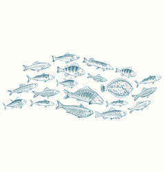 hand sketched fish underwater vector image