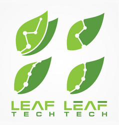 leaf tech vector image