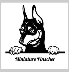 Miniature pinscher dog breed - peeking dogs vector
