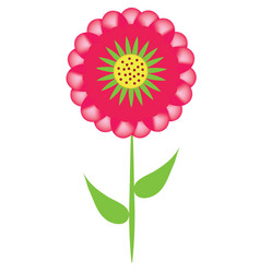 red aster flower vector image