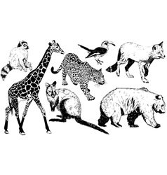 set of hand drawn animal vector image vector image