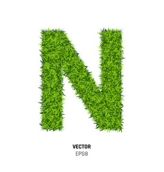green grass texture vector image
