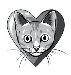 monochromatic black cartoon cat biting a huge vector image