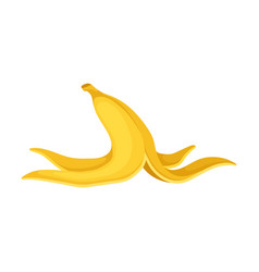 Peel from a banana on a white vector