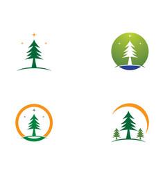 Pine symbol vector