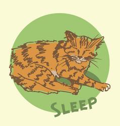 sleeping cat sketch vector image