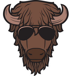 Bison head with aviator sunglasses color vector