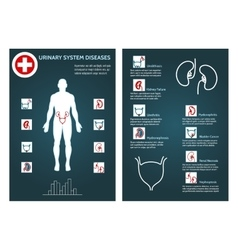 Brochure health flyer template vector