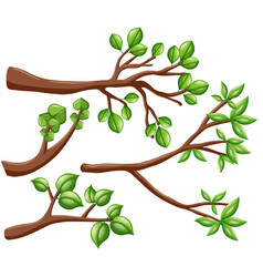 Different design of branches vector