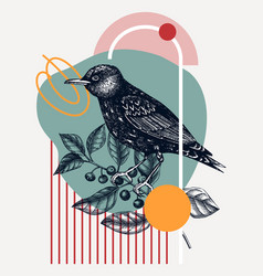 Hand-sketched starling perching bird on buc vector