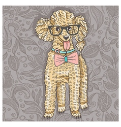 Hipster poodle with glasses and bowtie vector image