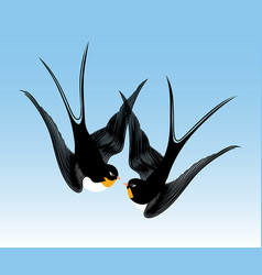 Kiss swallows vector