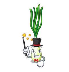 Magician fresh scallion isolated on the mascot vector