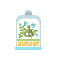 natural blue flowers and green leaves under glass vector image