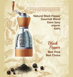 promo banner black pepper natural spice vector image