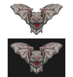 Vampire bat in flight vector