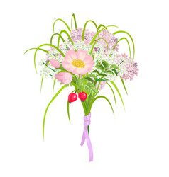 beautiful and elegang pink flowers isolated on vector image vector image