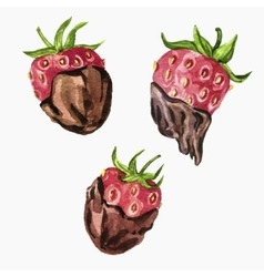 strawberry with chocolate vector image