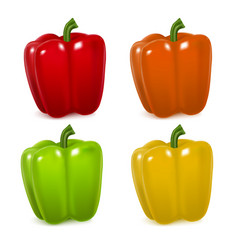 realistic detailed color pepper set vector image