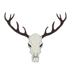 Deer skull Color vector image