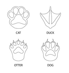 Foot and footprint icon vector