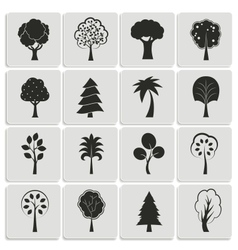 Green forest trees design elements vector image