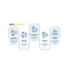 Internship financing infographic template vector
