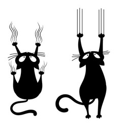 Set black cats scratching wall collection vector