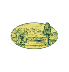 Willow and sequoia tree lake mountains oval vector