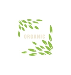 Leaf Frame Without Border Organic Product Logo vector image vector image