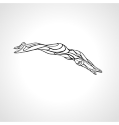 Swimmer diving into a swimming pool vector