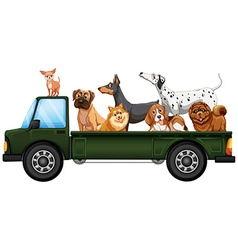 Truck and dogs vector