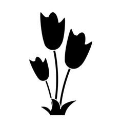 women day tulip bunch flower pictogram vector image vector image