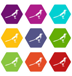 Bird magpie icon set color hexahedron vector