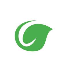 green leaves star flower logo designlogo leaf vector image