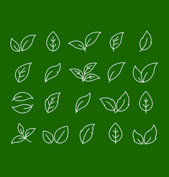 hand drawn set of linear white leaf icons vector image