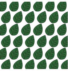 Leaves background design vector