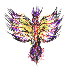 phoenix drawing on white background vector image