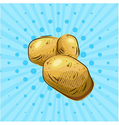 Potatoes on blue background vector