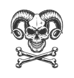vintage monochrome devil skull vector image