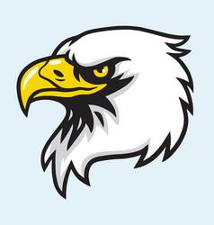 eagle head mascot vector image