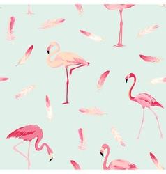 Flamingo Bird Background Flamingo Feather vector image